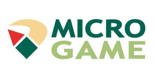 Slot Microgame & Casino Microgame