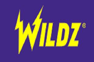 ワイルズカジノ (Wildz Casino) カジノレビュー