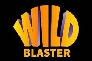 Онлайн-казино Wildblaster